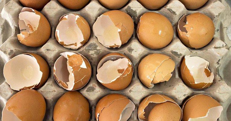 Broken Eggs 1200  630