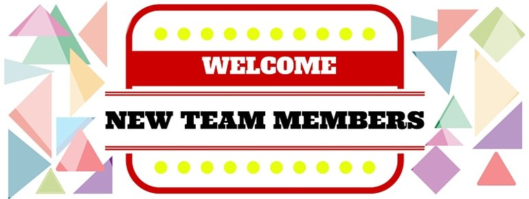 blog   new team members